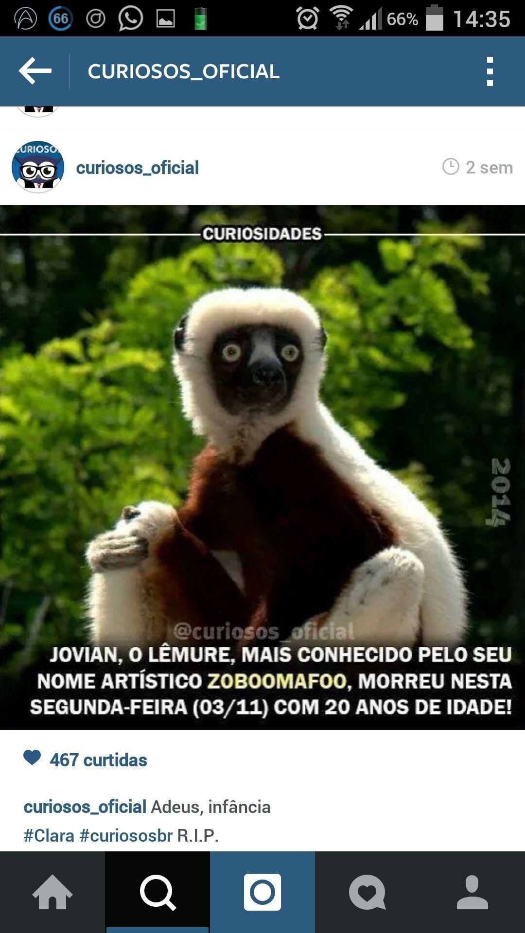 ñ - Meme by sincero :) Memedroid