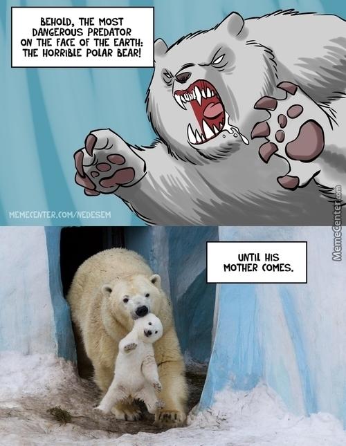 Polar Bear Meme By Nemesis00 Memedroid