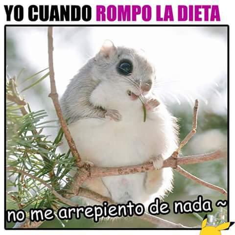 Al Carajo La Dieta Meme By Assassinfire Memedroid