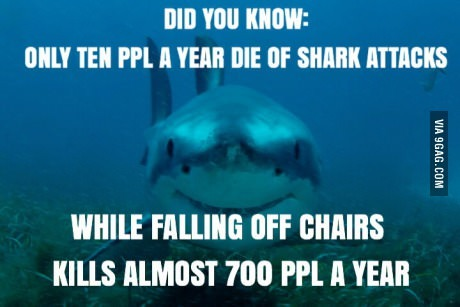 Sharks n' chairs