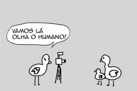 Olha o humano