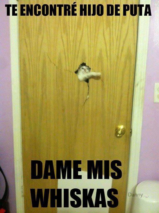 Onta Bebe Meme By Hugolaz Memedroid