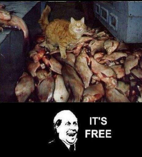 its free meme by db9 memedroid