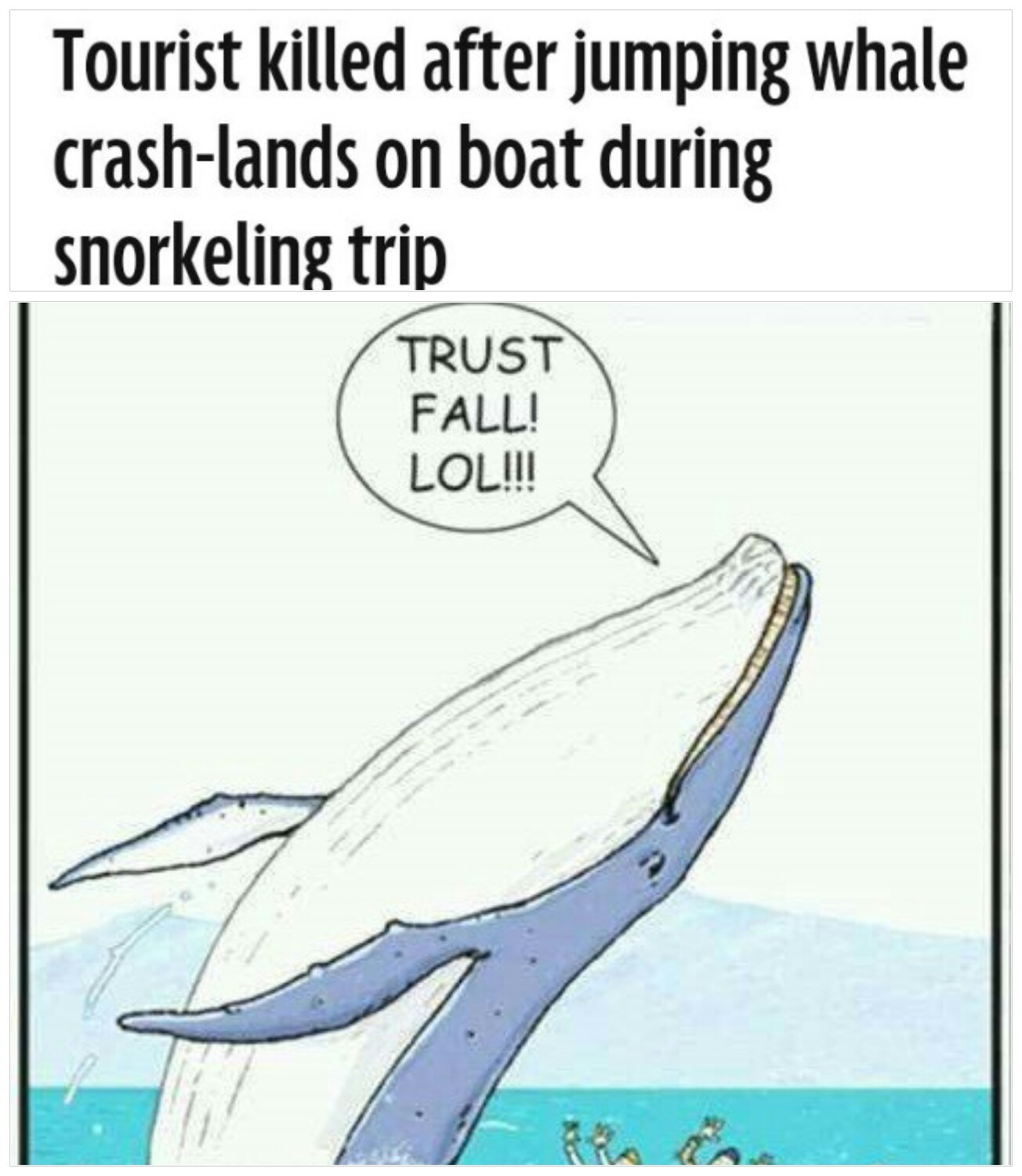 Memedroid - Images tagged as 'whale' - Page 7