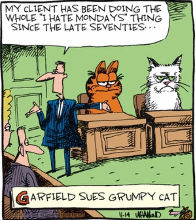 The Original Grumpy Cat Meme By S B K Memedroid