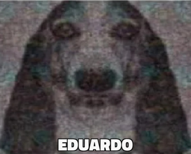 Padul mujer busca hombre