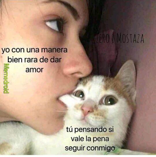 Amor Meme Subido Por Mr Cat09 Memedroid