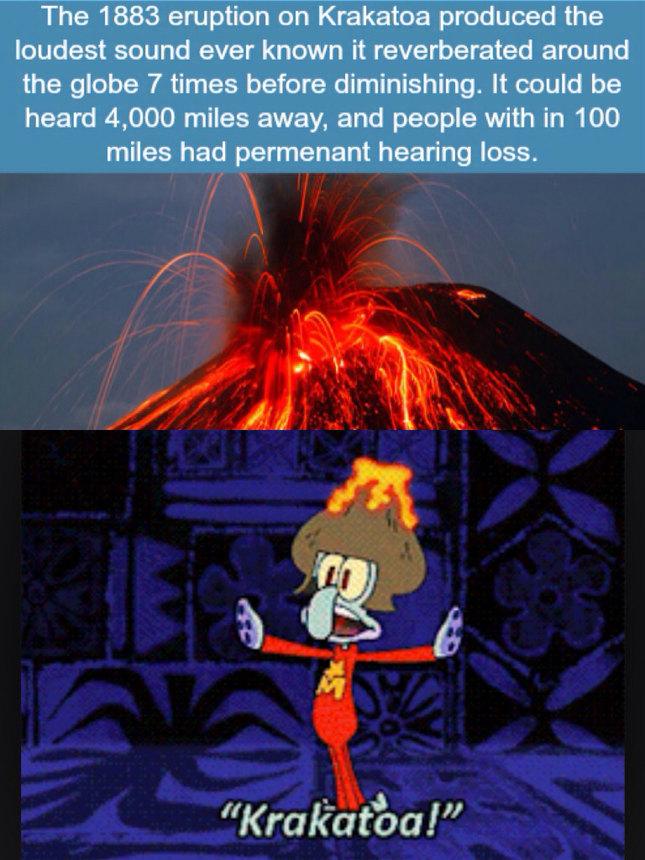 squidward krakatoa meme by giftie2046 memedroid