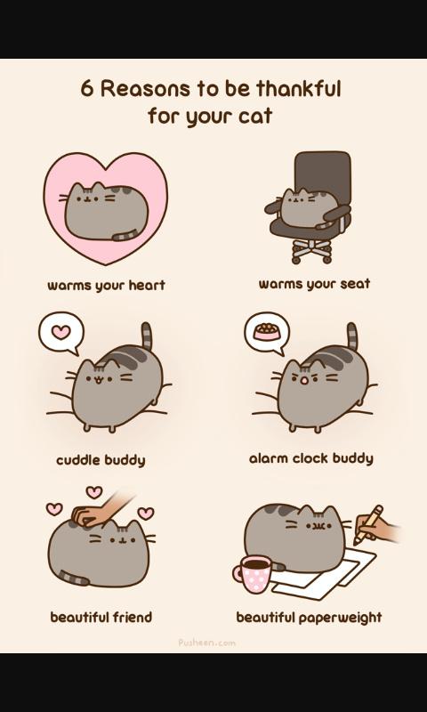 Pusheen Cat Meme By Hidari San Memedroid