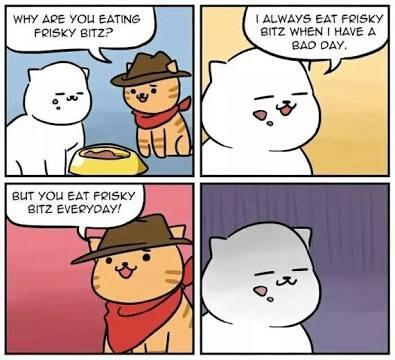 Poor kitty