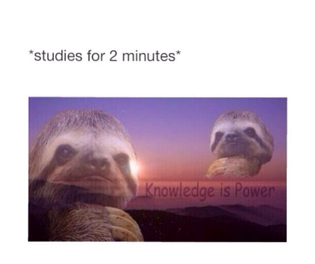 Knowledge Is Power Meme By Frostfireangel69 Memedroid