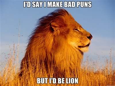 Image of: Gif Pinterest Animal Puns Meme By Smar5hzim Memedroid