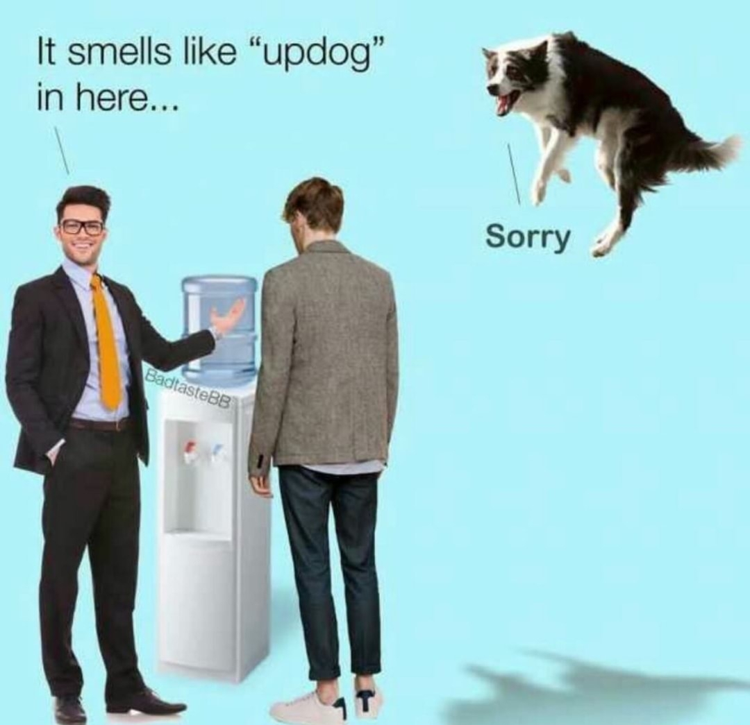 Up Dog Meme
