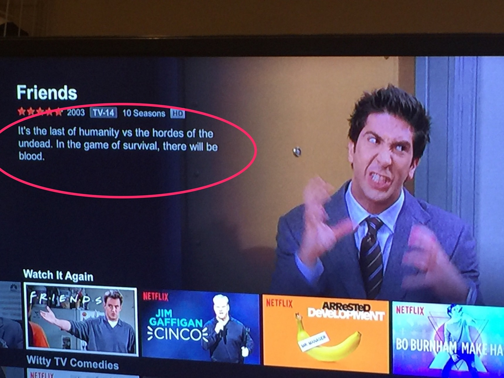 I fucking love Netflix glitches - Meme by Boodaman1027