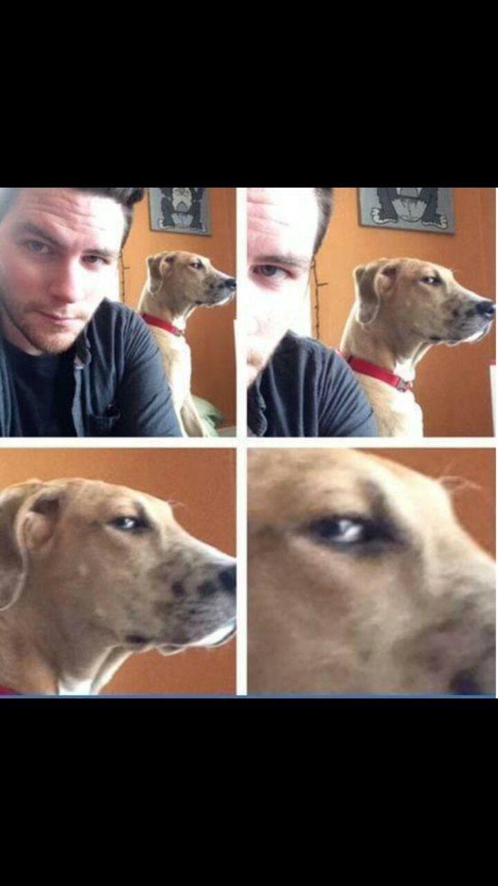 yo cuando alguien se esta haciendo una selfie =_= - meme