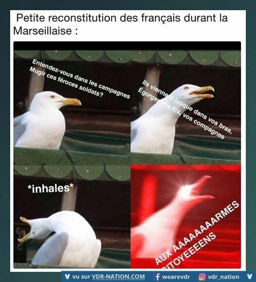 Vous français - meme