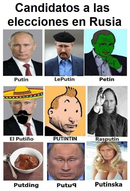 hay 2 buenos motivos para votar a putinska - meme