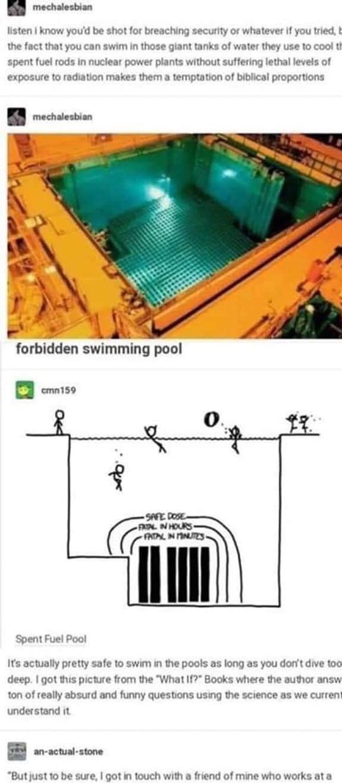 Forbidden Pool - meme