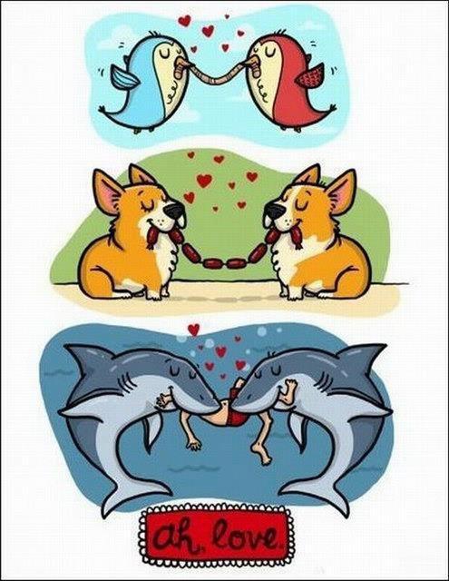 El amor es el amor - meme