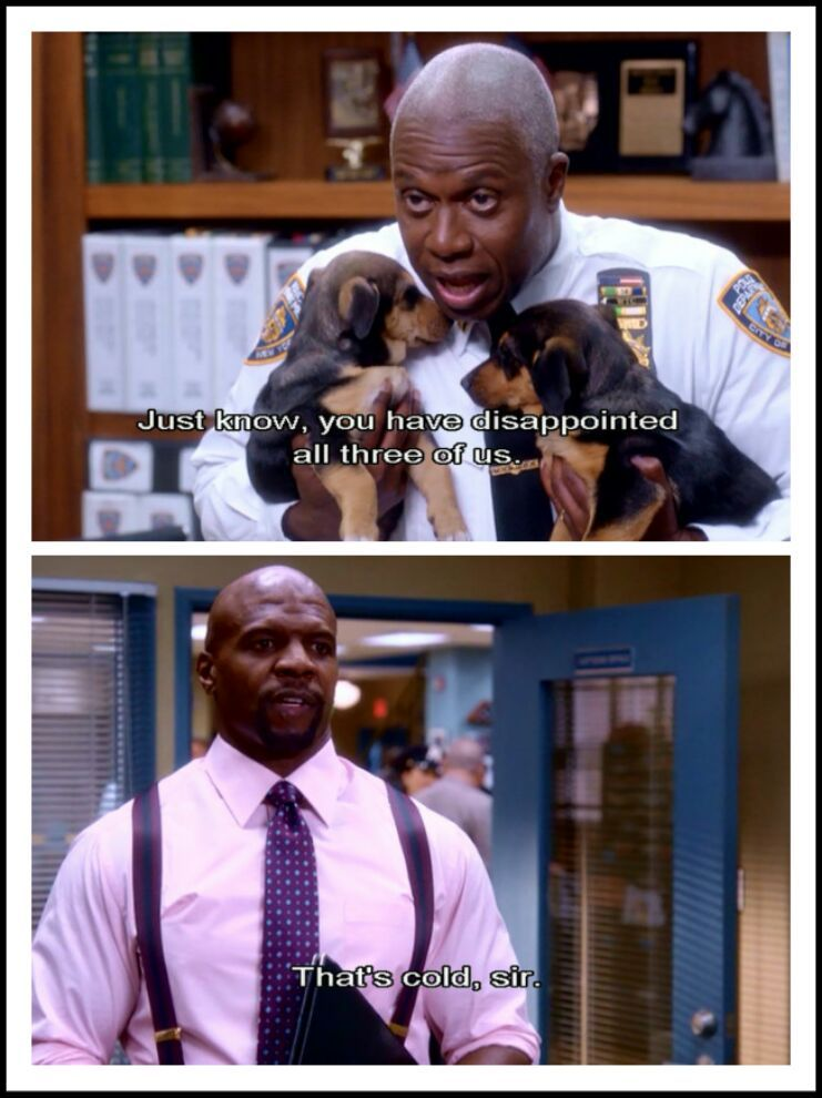 Nothing more worse than disappointing puppies....  Or your boss - meme