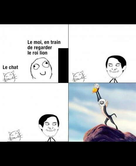 Roi lion + chat = folie - meme