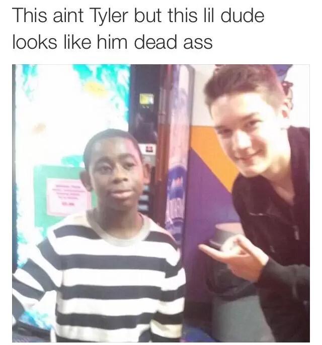 Tyler, The Creator - meme