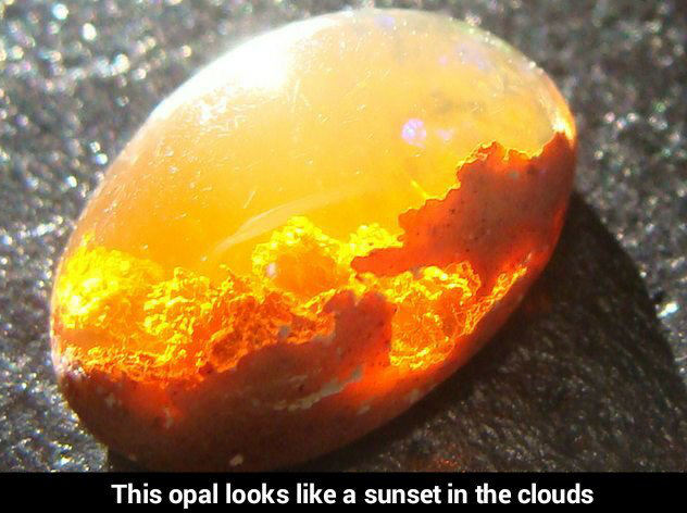Opal - meme