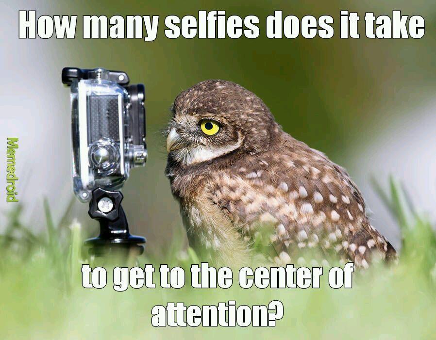 Selfies :/ - meme