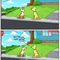 dogs are a man's best friend
