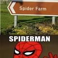 Spiderman aprueba esto