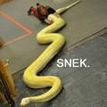 Sneeek sneek sneek!!!