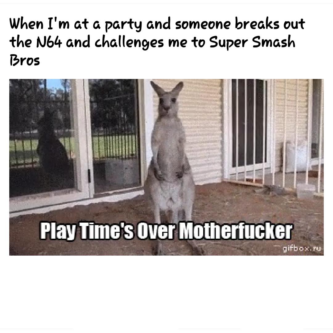 Favorite Smash Bros. Character?  *Link* - meme
