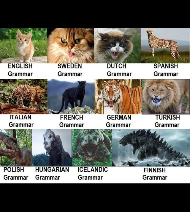 how hard is your language? - meme