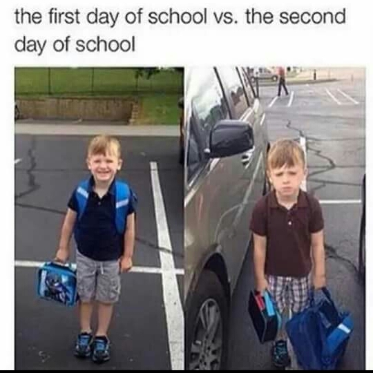 Title ignore school - meme