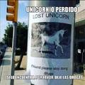 unicornio perdido