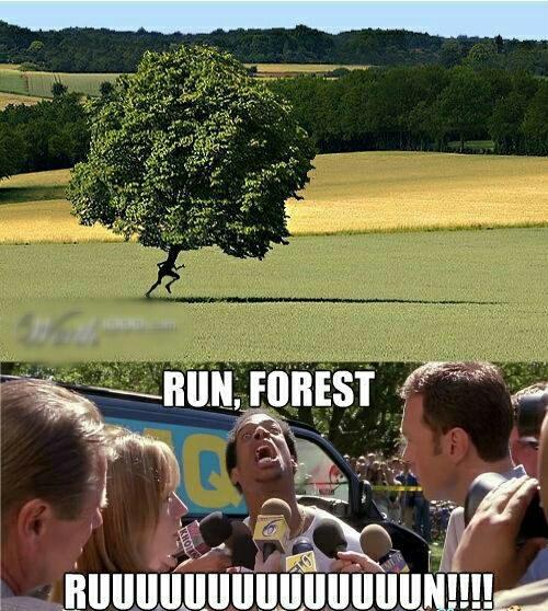 Cet arbre est déchainé ! - meme