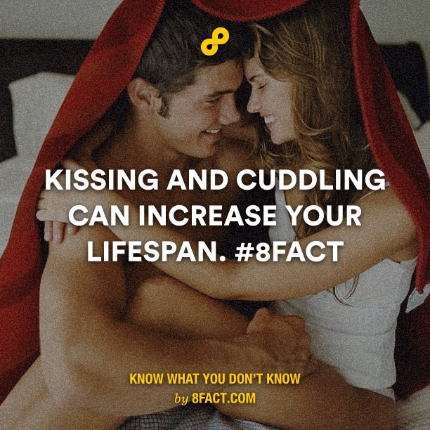 kissinf and cuddling - meme