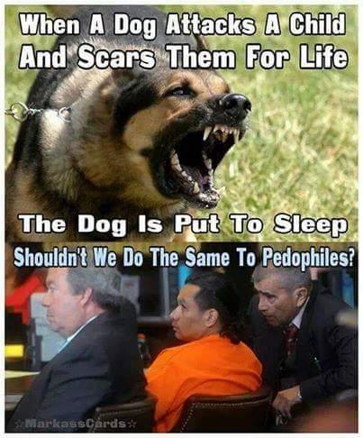 Kill all pedophiles - meme