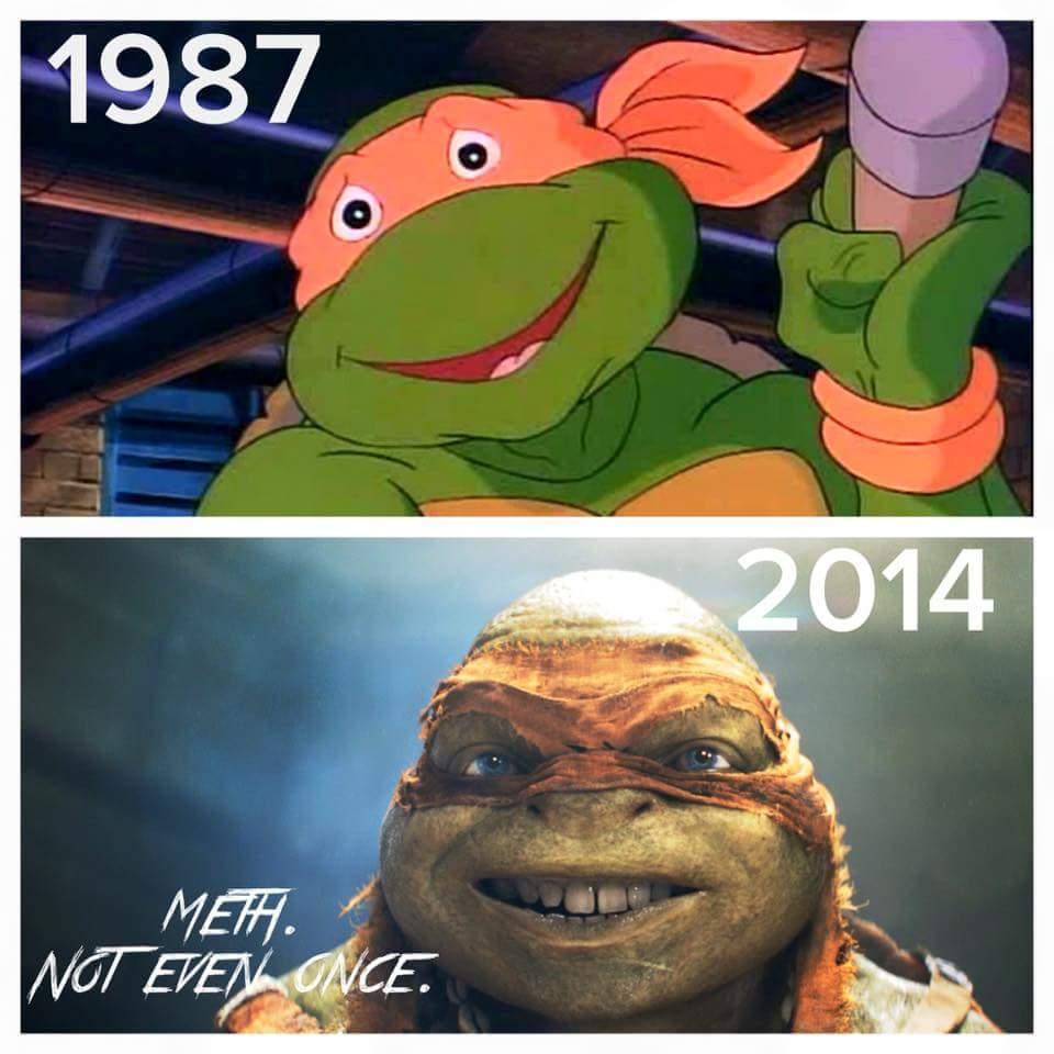 No more meth for you, turtles. - meme