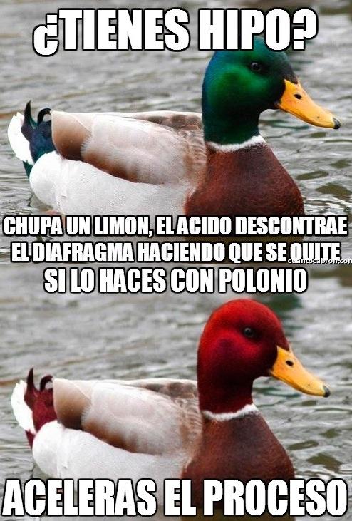 Pato Verde VS. Pato Rojo - meme