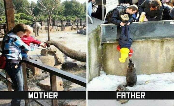 Diferencias entre madres y padres - meme
