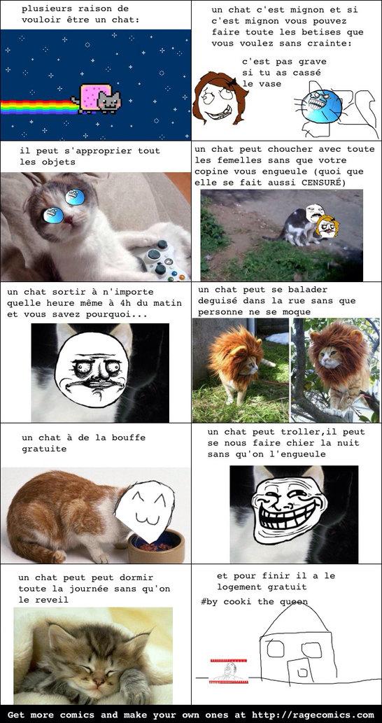 Je veux être un chat *^* - meme