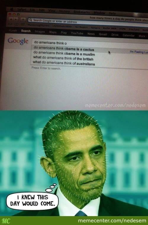 Obama cactus - meme