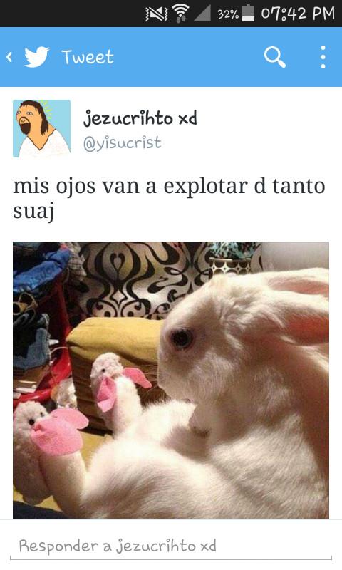 Este conejo irradia suaj - meme