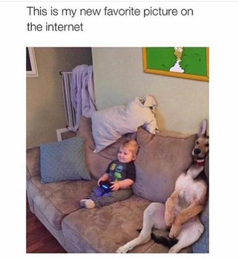 Best pic ever - meme