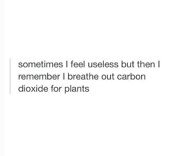 Feed the plants - meme