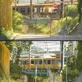 Anime vs. realidad 1