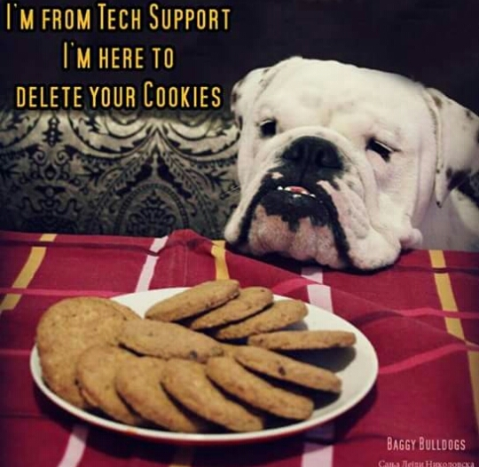 Tech Support is hungry - meme