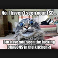 3rd comment is a dragon
