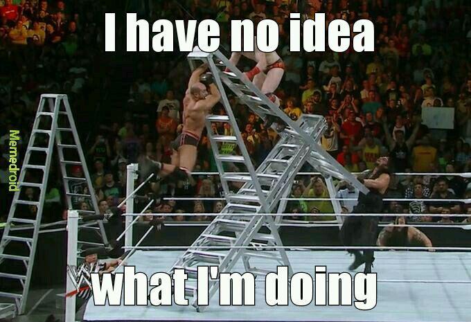 Ladder downvotes 5th comment - meme